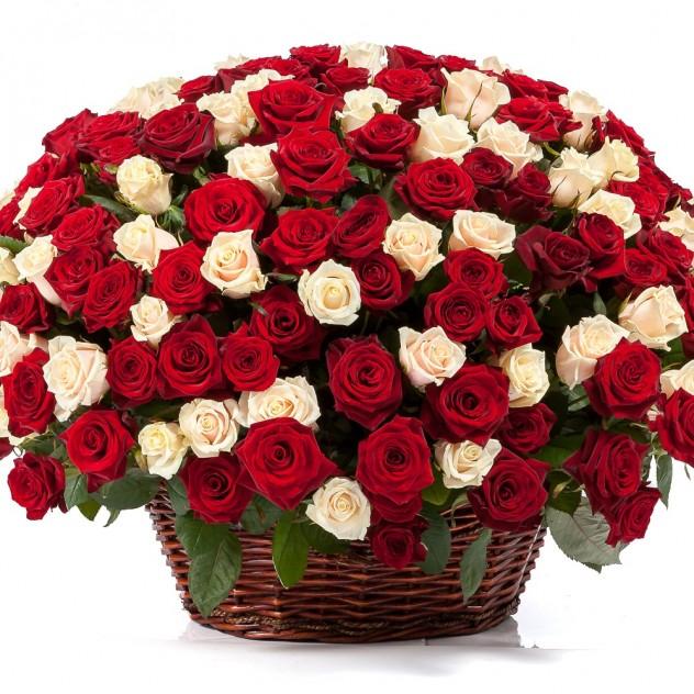Корзина 301 роза микс
